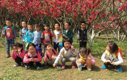 亲近自然,走进春天 ——北京王府幼儿园春游活动