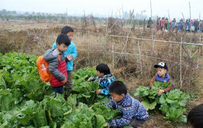 拥抱自然,守望秋天 ——北京王府幼儿园秋游活动