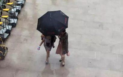 雨中开满伞花花