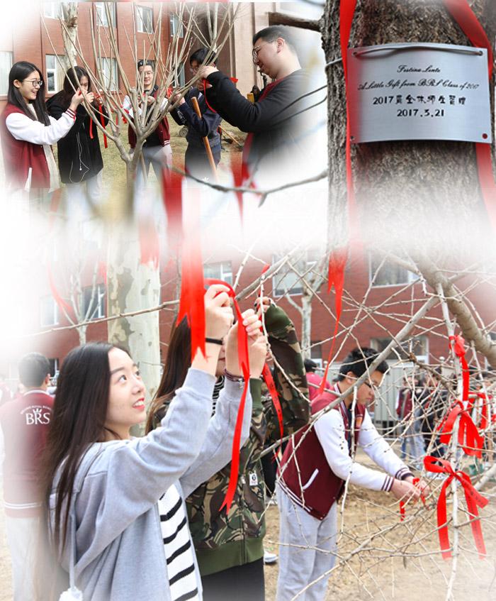 【2017毕业季】离开前,给母校留下长久的祝福——记2017届毕业生植树留念活动